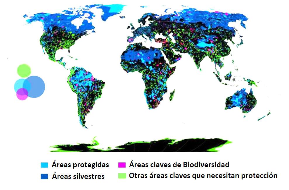 Areas con diferentes grados de proteccion y en verde areas que necesitan protegerse-